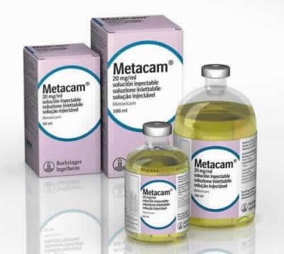 Metacam 20 Mg/ml Iny 12 X 100 Ml