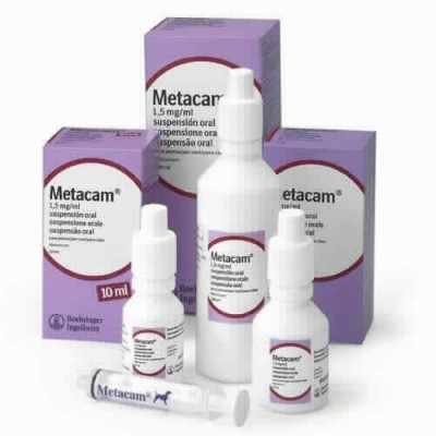 Metacam 1.5 Mg/ml Susp. Oral 10 Ml