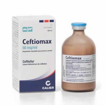 Ceftiomax 100 Ml