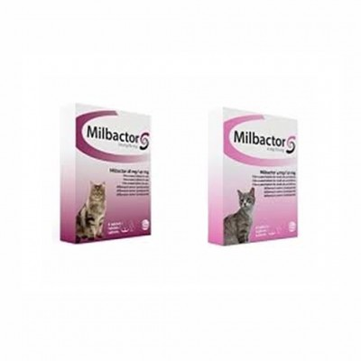 Milbactor Gato >2kg 4 Comp