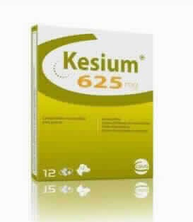 Kesium 625 Mg Perro 12 Comp