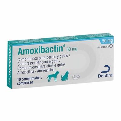 Amoxibactin 50, 10 Comp