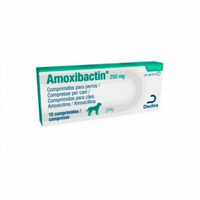 Amoxibactin 250, 10 Comp