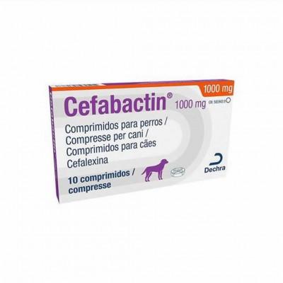 Cefabactin 1000 Mg 10 Tabs