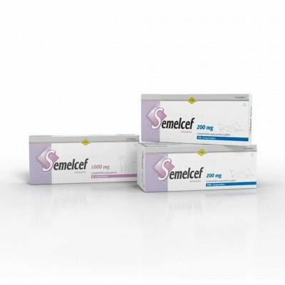 Semelcef 200 Mg 10 Comp