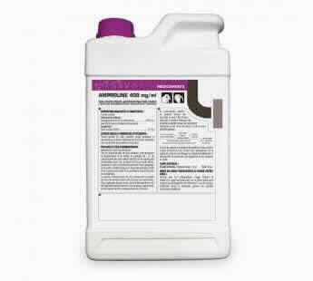 Amproline 400mg/ml 5 L Sol.a.bebida