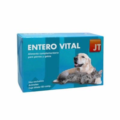 Enterovital 60 Cp(jt)