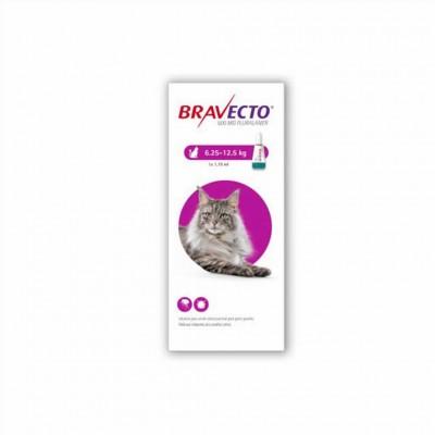 Bravecto Gato 500 Mg 6,25-12,05 Kg 1 Pip