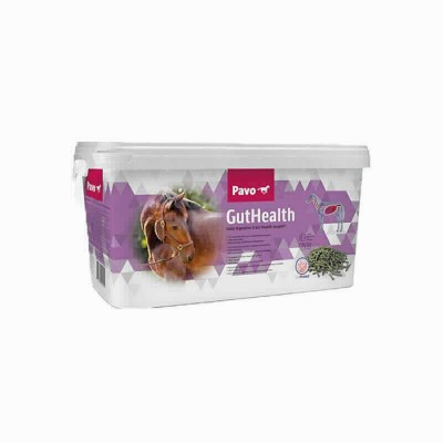 Pavo Guthealth Cubo 8 Kg