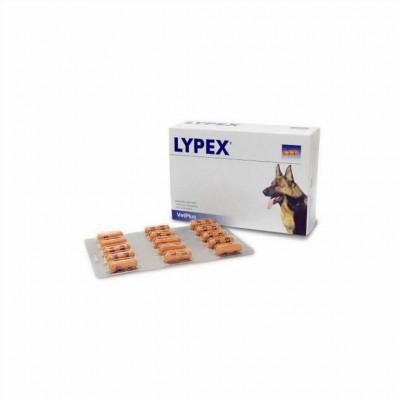 Lypex 60 Caps