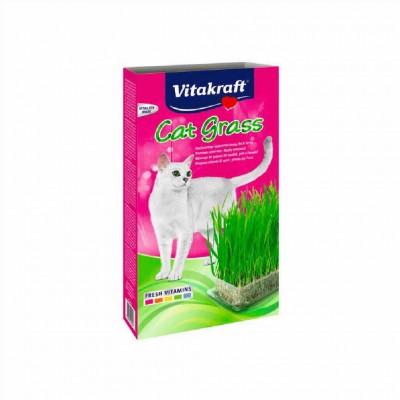 Cat Grass Hierba 6x120 Gr