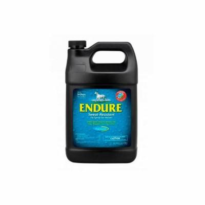 Endure 3,8 L