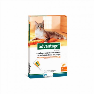 Advantage 40, Gato (- 4 Kg)