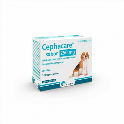 Cephacare 250 Mg 100 Comp