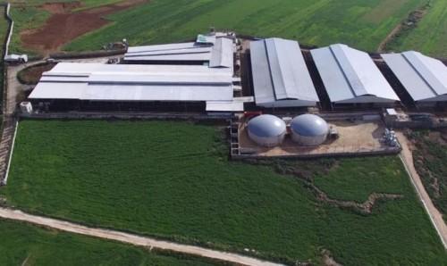 El biogás y la economía circular en ganadería