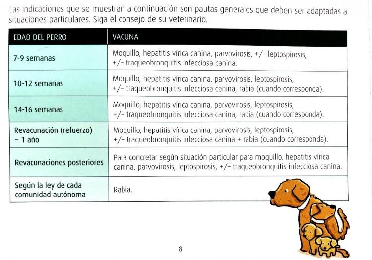 Prevenir enfermedades infecciosas – Vacunación - imagen 3