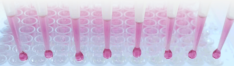 Biotecnología aplicada al diagnóstico veterinario